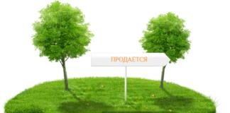 Покупка земли для строительства дома